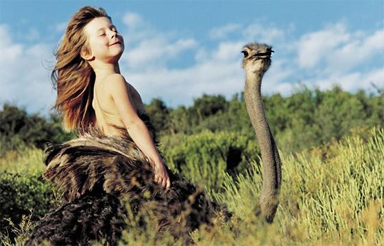 avestruz 1