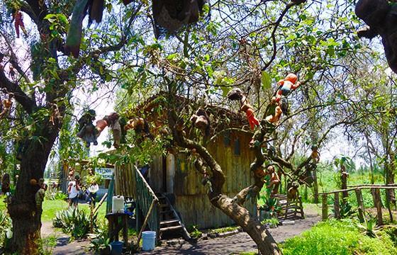 Vista de la tenebrosa isla de las muñecas en Xochimilco México