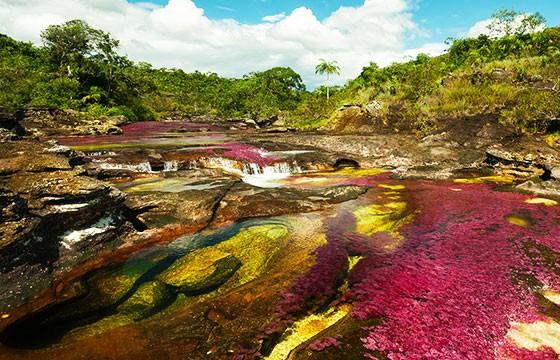 Caño Cristales, Colombia. Lugares secretos y extraordinarios del mundo.