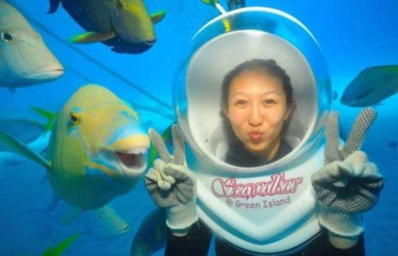 Debajo del mar. Selfies donde se han colado animales.