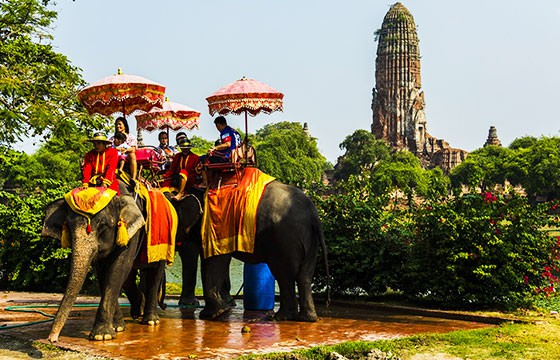 Elefantes de Tailandia. Lugares que dan suerte.
