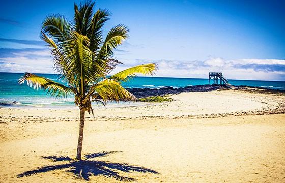 Vista de Isla Baltra en los Galápagos