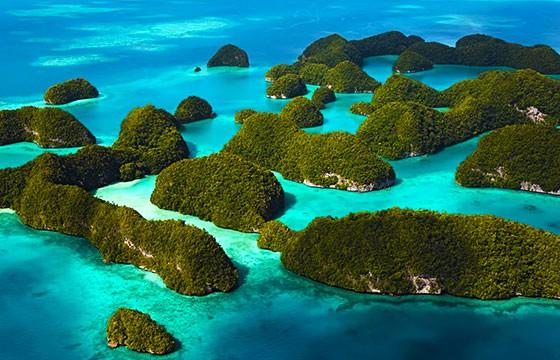 Lago de las Medusas, Islas Palau. Lugares secretos y extraordinarios del mundo.