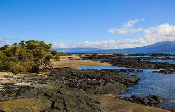 Vista del Parque Nacional Galápagos