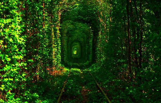 Túnel del amor, Ucrania. Lugares secretos y extraordinarios del mundo.