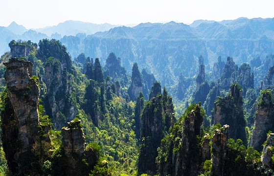 Parque Zhangjiajie