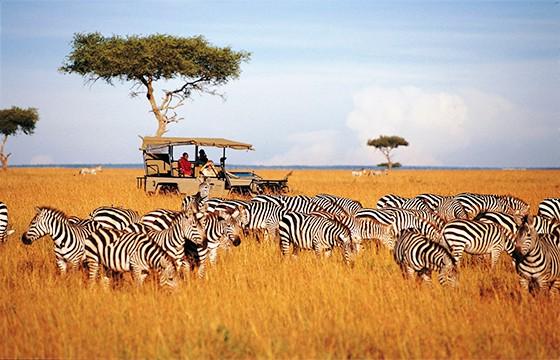 Tanzania, África. Destinos que visitar para ser más feliz.