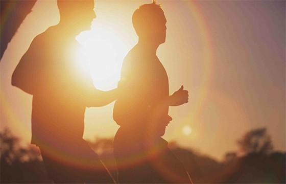 Evitar las horas pico de sol.