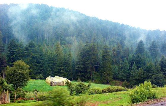Lugares para acampar