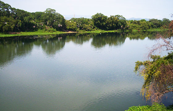 VISTA GENERAL RIO PAPALOAPAN