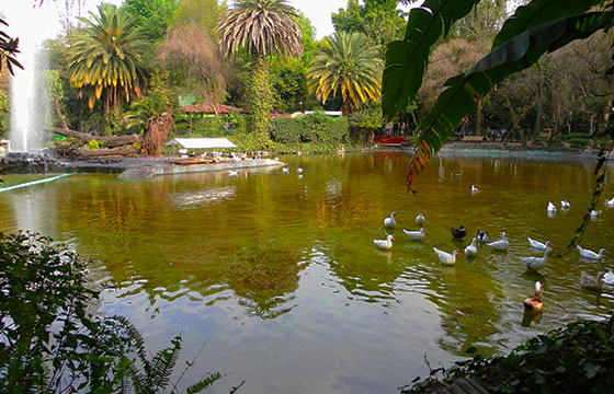 Parque México-cezzie901-Flickr