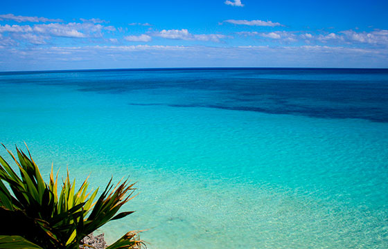 Tulum beach-Esparta Palma-Flickr