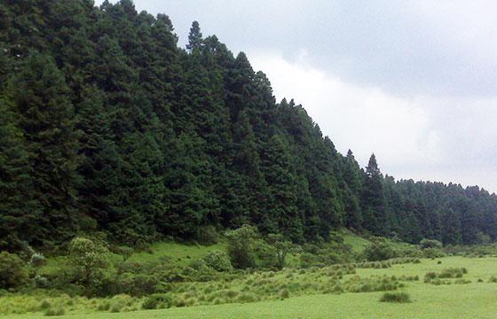 Parque Nacional Insurgente Miguel Hidalgo y Costilla