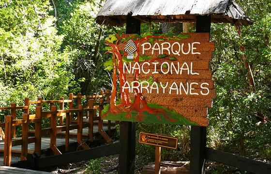 Excursiones en el Parque Nacional Los Arrayanes