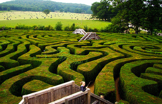Longleat Maze-Editada-Jon Candy-http://bit.ly/1pO7G9R-Flickr