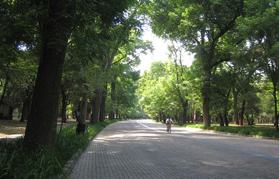 Segunda sección Bosque de Chapultepec