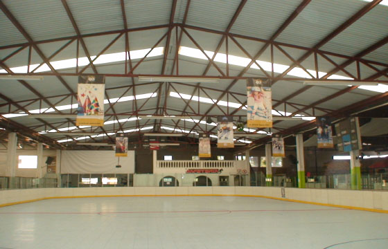 Pista de patinaje Skatium