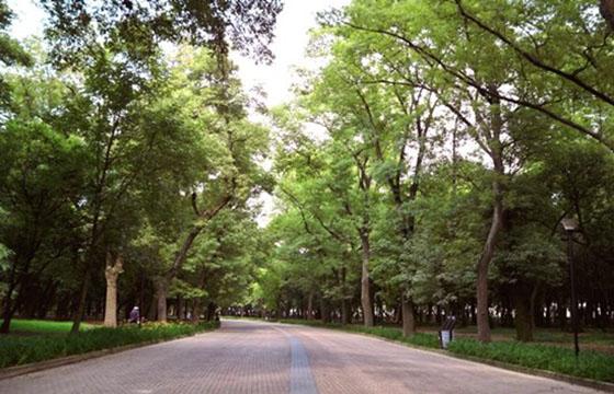Parque Ecológico Cuemanco-Xochimilco