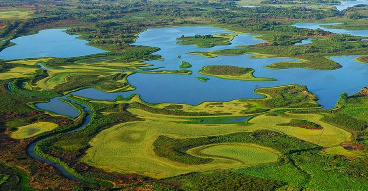 Pantanos de Centla