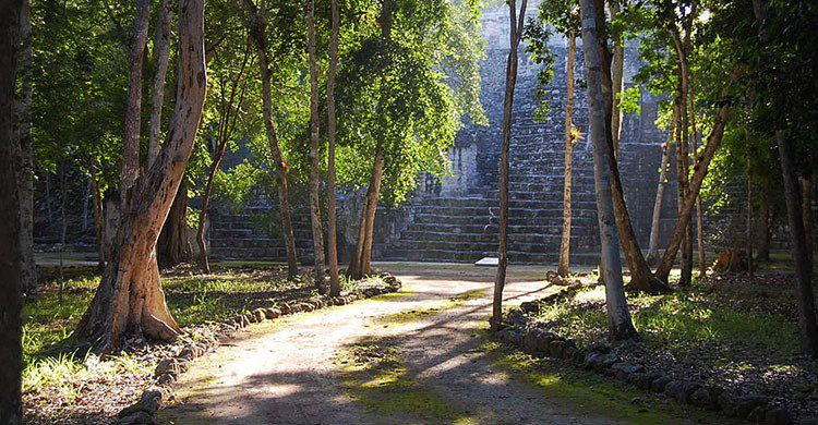 Petén Campechano, Calakmul, Campeche