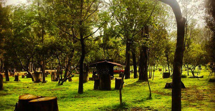 Bosque de San Luis Tlaxialtemalco