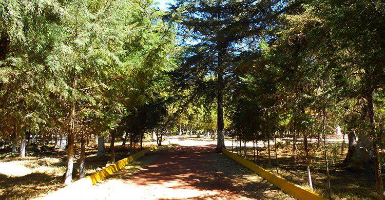 Fuente imagen: Ayuntamiento Jilotepec