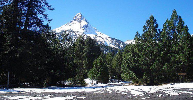 Fuente imagen: Gobierno Municipal de Zapotlán El Grande