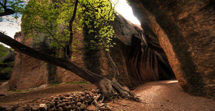 Fuente imagen: mychihuahuatours.com