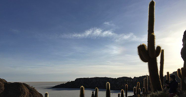 Flickr-Bolivia, Salar de Uyuni, flamingo's-Joeke-Remkus de Vries