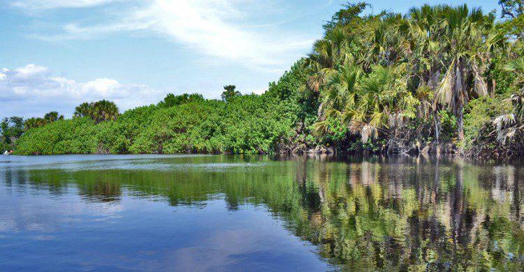Fuente imagen: en-mexico.com