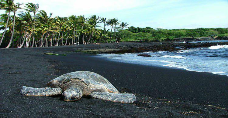 Playa de Hawai