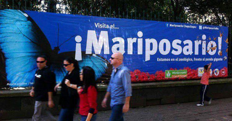 Mariposario de Chapultepec