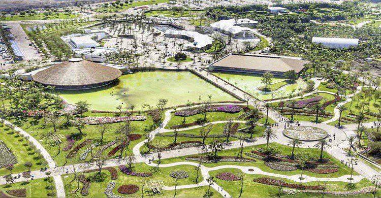 Jardines de México Vista aérea