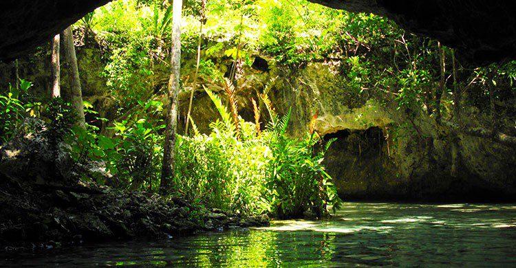 Cenotes sagrados