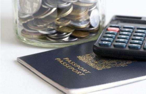 presupuesto pros y contras