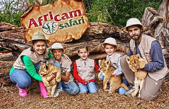 8-africam