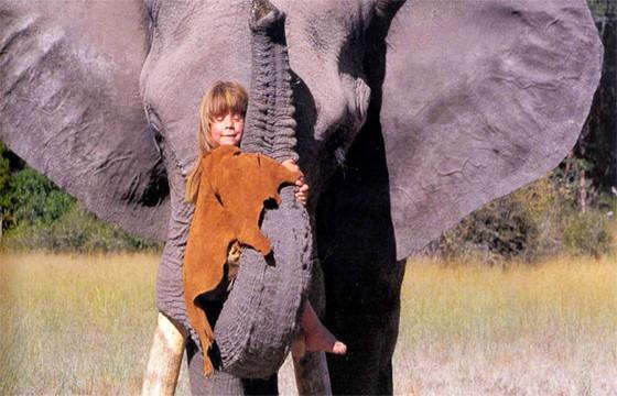 elefante 1