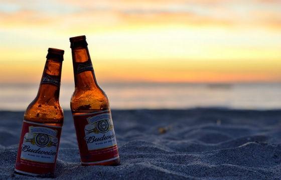 Budweiser, USA. Cervezas típicas de cada país que debes probar en tus viajes.