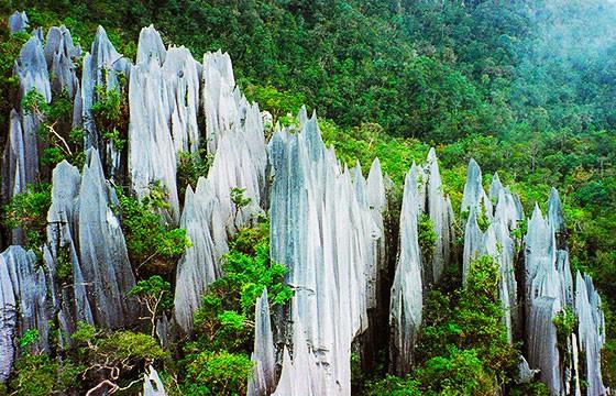 Lugares del sudeste Asiático, Gunung Mulu Malasia