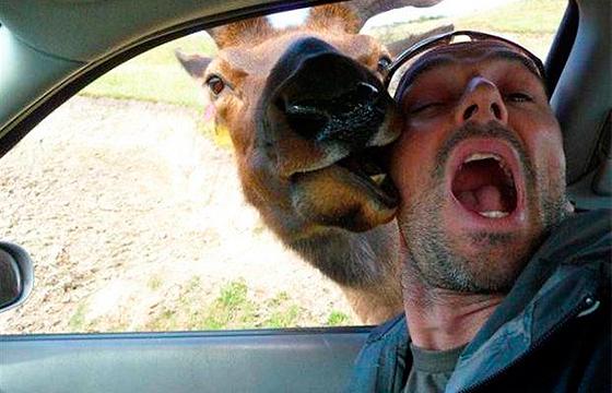 selfie-graciosa