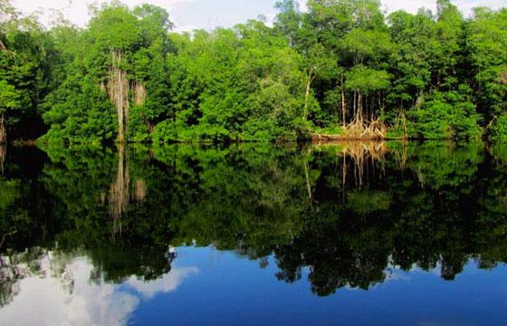 Reserva ecológica La Encrucijada