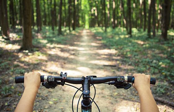 Ciclismo de montaña cuesta abajo descendente rápida en bicicleta-Ivantsov-Istockphoto