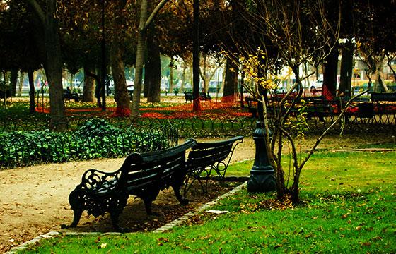 Parque Forestal-Editada-Razi Marysol Machay-http://bit.ly/1T2VdLg-Flickr
