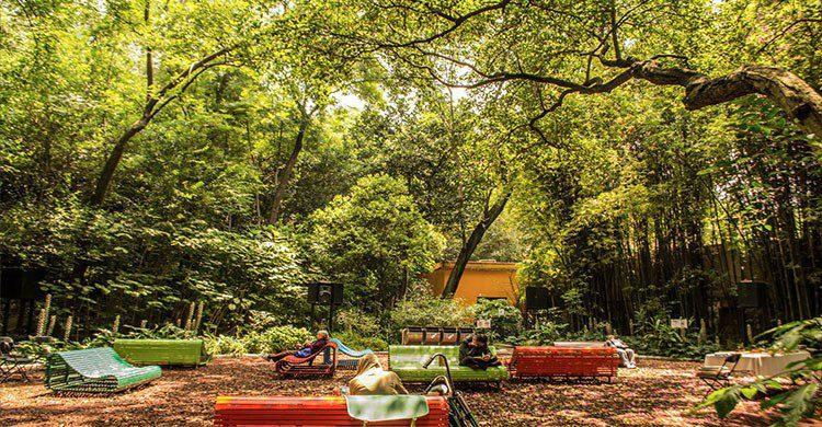 Espacio del Bosque de Chapultepec