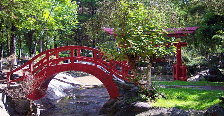 Puente ne parque la Pagoda