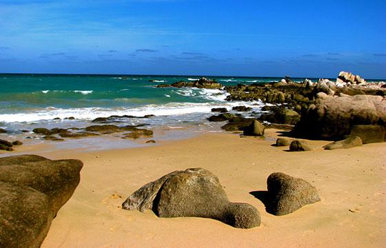 Cabo Pulmo-Jeff Gunn-Flickr