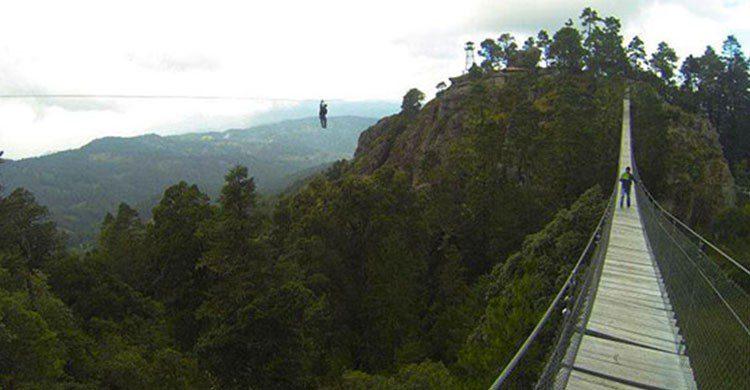 Puente colgante en Sierra Norte