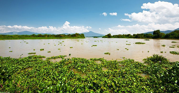 Lago de Patzcuaro & Isle of Janitzio - Mexico-1