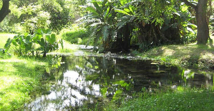 Balneario Agua Limpia