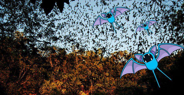 Cueva de los Murcielagos-Editada-Cristopher Gonzalez-http://bit.ly/2av7c1E-Flickr